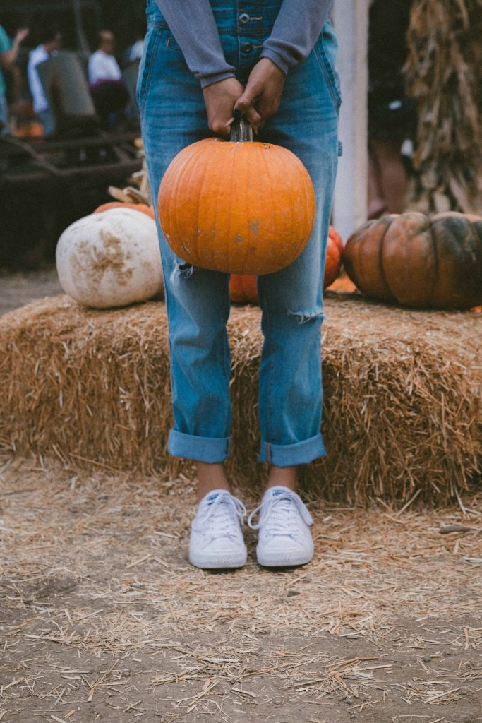 things to do in minnesota in fall
