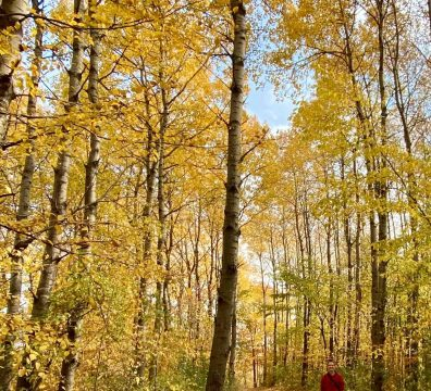 Where to Find Incredible Fall Colors