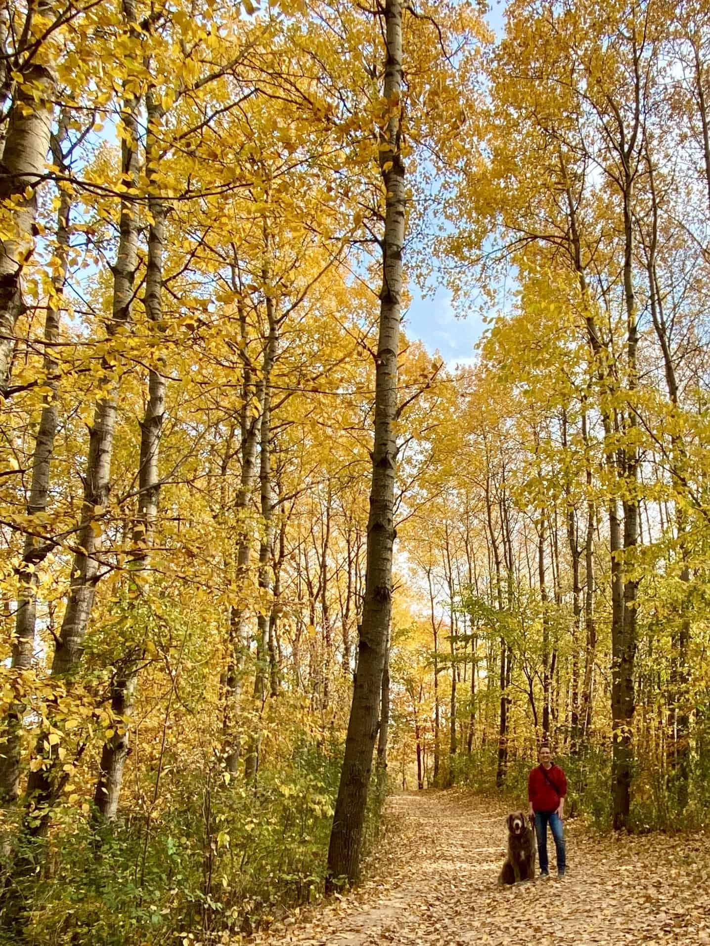 Lebanon Hills: Where to Find Incredible Fall Colors - Expedition Kristen